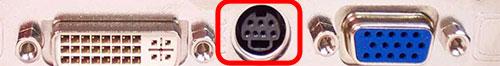 component-videokaart